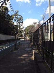 こうべ小学校付近の歩道 (現地マンションんから徒歩2分ほど)
