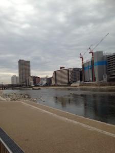 武庫川の反対側から撮影