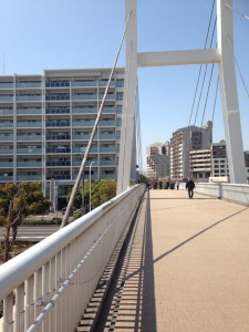 駅からマンションはこの橋を利用すれば信号待ちもない。