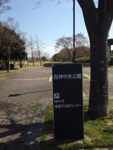 「ジオ西神中央」の目の前にある西神中央公園