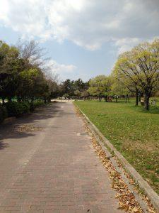 「鳴尾浜公園」の様子
