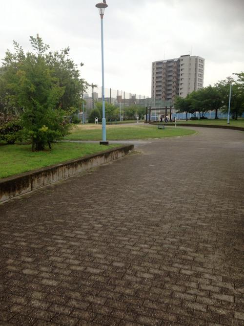新駅8号公園