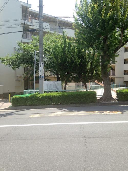 道路を挟んだ向かいは市営住宅