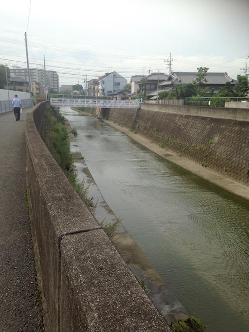 正雀川の様子