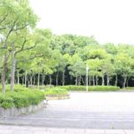 新檜尾公園 ウエリス光明池周辺